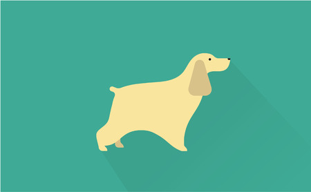 spaniel: cocker spaniel vector flat illustration clean and simple style