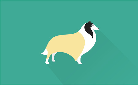 shetland: collie vector flat illustration clean and simple style