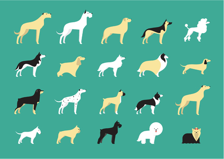 golden border: various dog breeds modern  illustration flat style