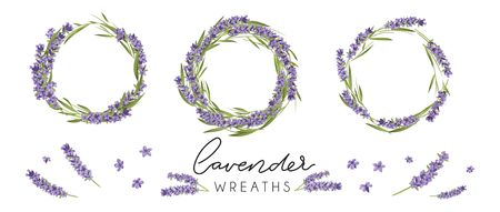 Set of cute lavender wreaths. Provence style floral design. Vector lavender flowers isolated on white background Illustration