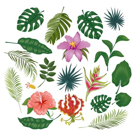 Simpatici adesivi ed etichette tropicali su sfondo bianco. Insieme estivo di foglie e fiori. Illustrazione vettoriale Vettoriali