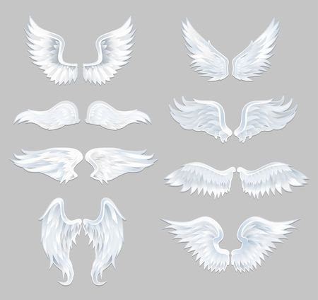 Set of beautiful angel wings isolated on grey background. Vector illustration