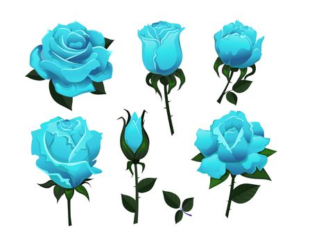 Set of decorative blue roses isolated on white background.Colorful vector roses for invitations, greeting cards, posters etc. Иллюстрация