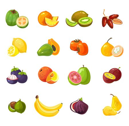 Zbiór owoców kolorowy kreskówka na białym tle. Ilustracja wektorowa owoców tropikalnych