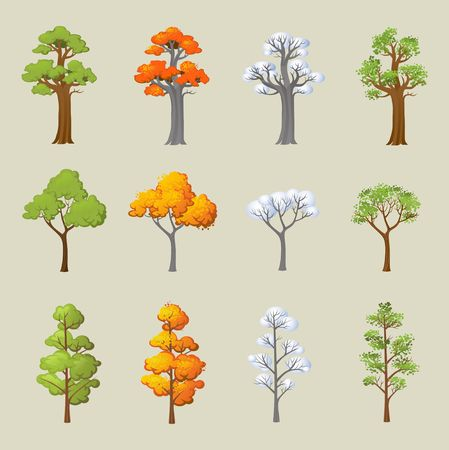 Set of different trees with seasonal design. Cartoon trees in snow and leaves. Vector illustration