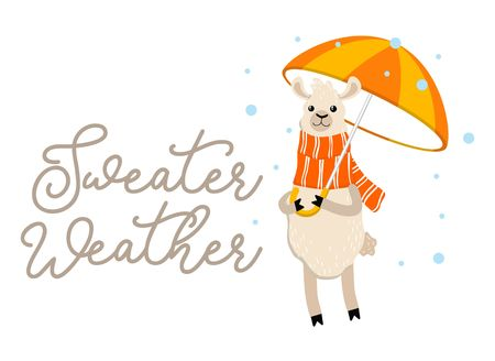 Sweater weather inspirational autumn design with llama holding umbrella and wearing scarf. Cute alpaca illustration with lettering typography. Fall vector illustration or print.