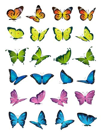 Butterflies flying set on white background vector illustration. Collection of colorful moth with pattern on wings. Sticker of summer or spring botany sign