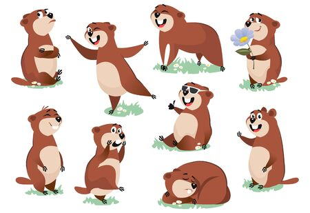 Marmot or beaver wild animal rest on nature vector illustration. Funny character on meadow in various poses excited about life cartoon design. Groundhog day concept. Isolated on white background