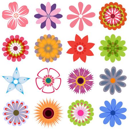 여러 꽃 1