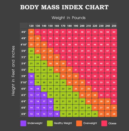 체질량 지수 차트 - 체중계의 높이 일러스트