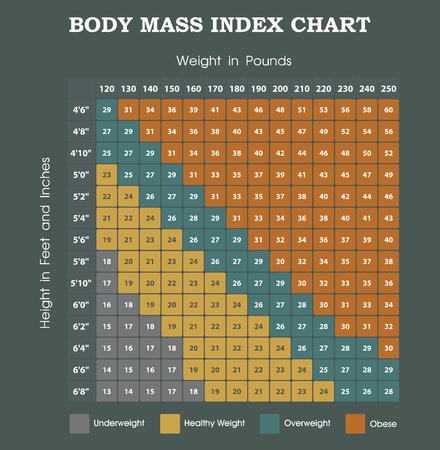 身体質量指数チャート - 高さ重量インフォ グラフィック