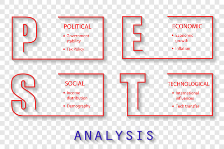 PEST Analysis font design on photo paper with main objectives - project management template