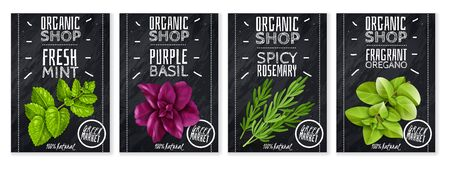 spices herbs cards Ilustração Vetorial