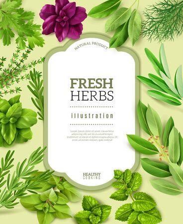 spices herbs frame illustration Illusztráció