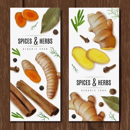 Realistic herbs dry spices roots set vertical banners