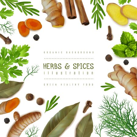 Square illustration frame with herbs and spices. Textured items. Isolated objects cillection. Ginger, turmeric, slices, roots, Bay leaf, pepper. Vector illustration