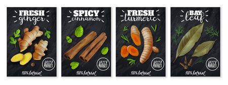 Four vertical posters with herbs and spices. Chalk Board background. Hipster style. Organic food. Flavorful seasonings. Vector illustration