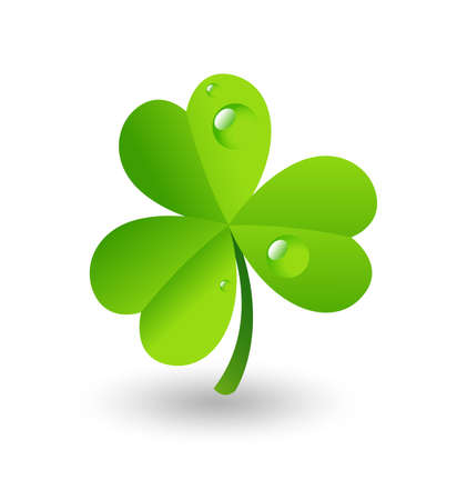 Water Drops on Shamrock Vector