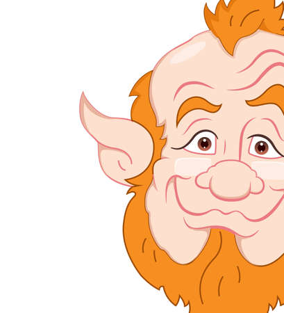 Old Leprechaun Closeup Vector