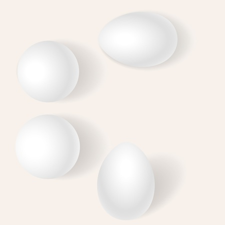 Eggs on a White Background Vector