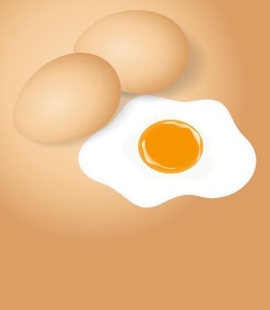Chicken Eggs with Egg Yolk Vector