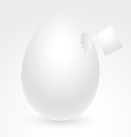 Chicken Egg with Flag Vector