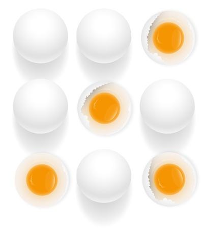 broken eggs: Broken Eggs in Set of Eggs