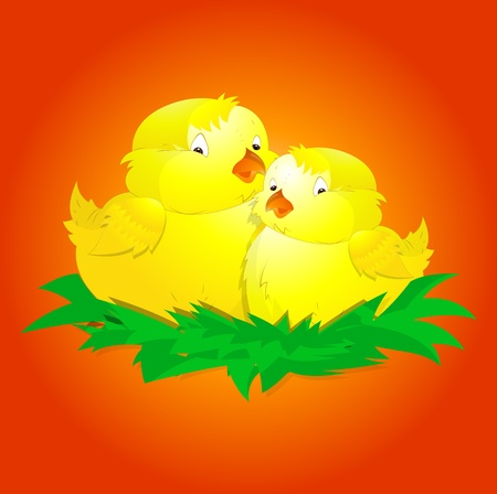 Cute Baby Chicken Vector