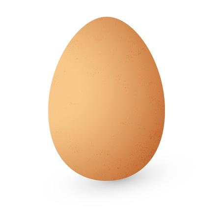 cartoon egg: Vector Egg Isolated on White Background