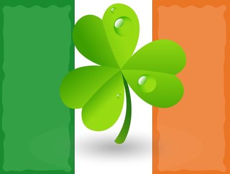 irish banners: Shamrock on Irish Flag Background Illustration