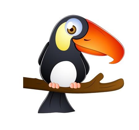 amerika papağanı: