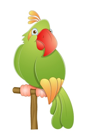 Cute Macaw Vector