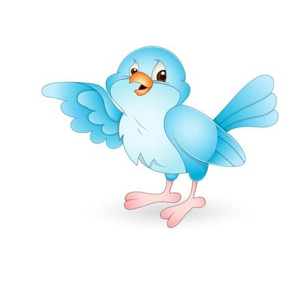 bluebird: Bird Illustration