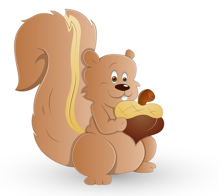 Cute Squirrel Stock Vector - 13358182