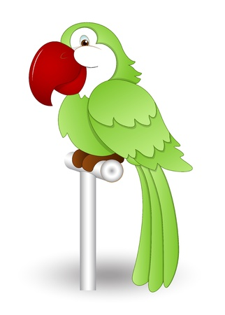 veréb: Aranyos papagáj Illusztráció