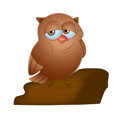 cartoon owl: Cartoon Owl Illustration