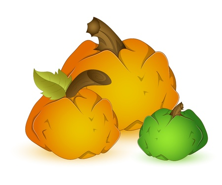 Set of pumpkins Stock Vector - 13430897