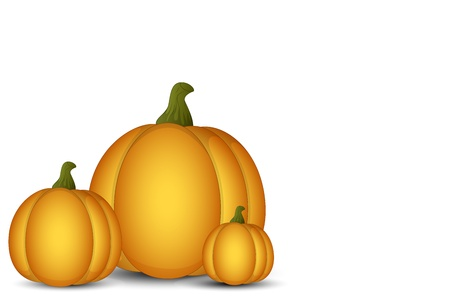 Vector Pumpkins on White Background Vector