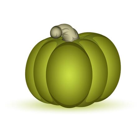 Green Pumpkin Stock Vector - 13430263