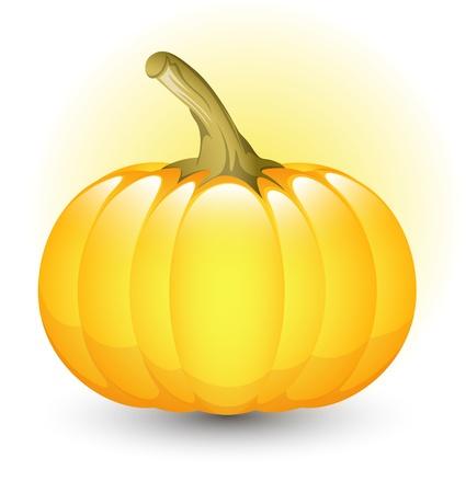 Glossy Pumpkin Stock Vector - 13430975