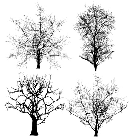scary forest: Dead Trees Vectors Illustration