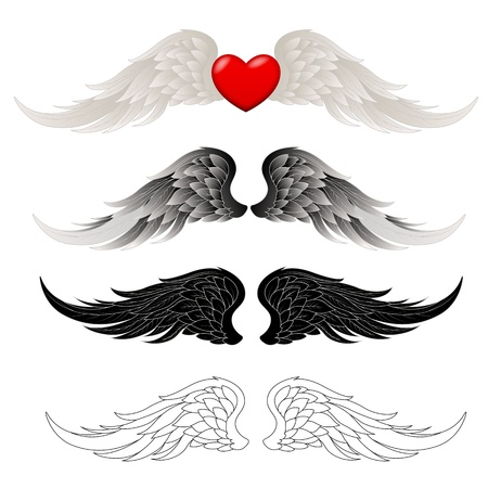 heart with wings: Wings Vectors