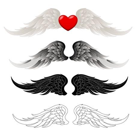 Wings Vectoren