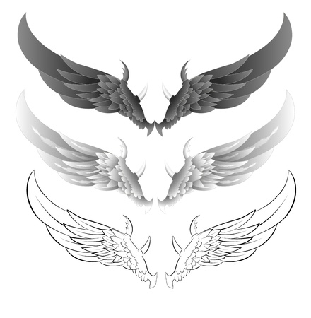 spreading: Wings Vector Illustrations