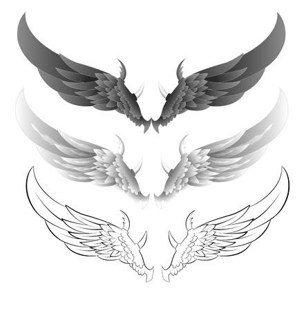 veréb: Wings vektor illusztrációk