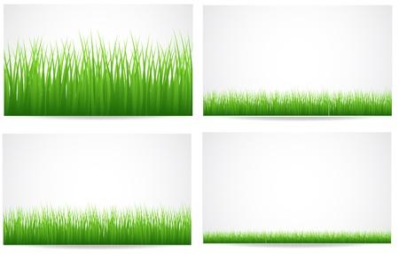 Grassline Achtergronden Vectoren Vector Illustratie