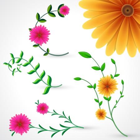 Flower Pack Vector