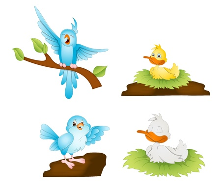 Cartoon Birds Vectors Vector