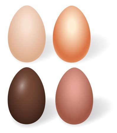 Choco Vector Eggs Vector