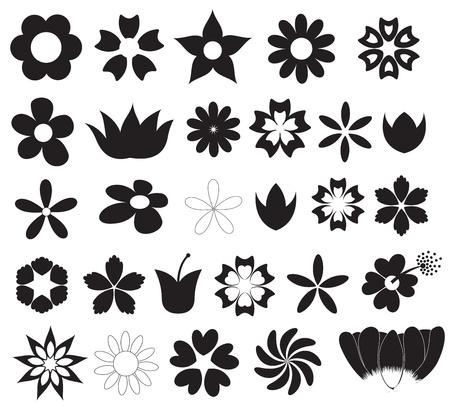 silhouette fleur: Fleurs silhouettes Vecteurs Formes